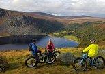 Half Day Fatbike Tour - Wicklow Ballinastoe