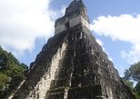 Tikal Mayan Ruins by Air Tour (All included)