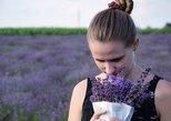Branson Hike & Lavender Farm