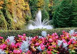 Victoria City and Butchart Gardens Private Half-Day Tour