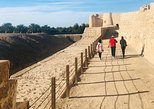 Half Day Private Tour: Trail of Delmon Civilization from Manama