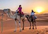 Agadir Camel or Horse Riding