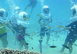Tour in Saipan Managaha Island and Water Sport Experience