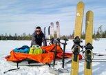 Ski expedition in Riisitunturi National Park