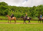 Central America - Costa Rica: Horseback Riding and Waterfall in Jacó