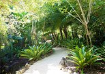 Caribbean - Cayman Islands: Queen Elizabeth II Botanic Park and Pedro St James Castle Tour in Grand Cayman