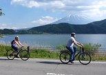 Mt Fuji and Fuji Five Lakes Easy Bike Tour