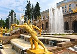 1 day ALL-inclusive Private Deluxe Saint-Petersburg City and Countryside Tour