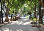 Mexico City Streets: La Roma Walking Audio Tour by VoiceMap