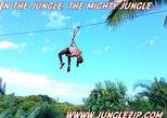 8 Lines Jungle Zipline Tour - Eco Tour