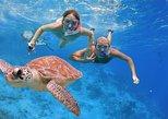 Bali Snorkeling Trip at Blue Lagoon