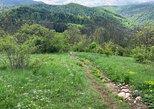 Hiking through the mountains of Brasov