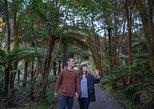 Hells's Gate: Geothermal Nature Walk