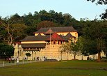 Day Tour to Kandy from Colombo or Negombo