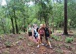 2D1N Trek Adventure at Mea Wang with Overnight at Karen Hilltribe Village