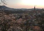 Private tour guide all over Switzerland and Liechtenstein