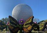 Disney Epcot Private VIP Tour