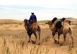 Bayan Gobi and Karakorum tour