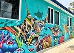 Street Art of Isla Mujeres Tour