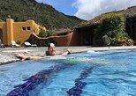 South America - Ecuador: Private Tour Papallacta Hot Springs and Hummingbirds garden