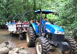 Rainforest Wagon & Crocodiles Safari Cruise. Shore Excursion from Puntarenas