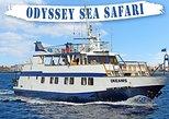 Odyssey Boat Safari - from Larnaca
