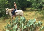 Horseback Riding Lessons in Weatherford