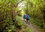 Hiking Trekking & Temple Stay 12days 11nights