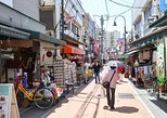 Yanaka Historical Walking Tour - See a Snapshot of Tokyo's Past
