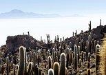 Honeymoon on the salar de Uyuni - 7 Days