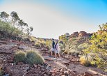 Australia & Pacific - Australia: Kings Canyon Guided Rim Walk