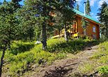 Day trips to the Cinnamon Girl cabin