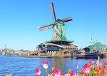 Marken, Volendam & Zaanse Schans: Cheese, Windmills and Clogs