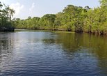 Waccamaw River Nature & Wildlife Tours