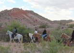 1.5 Hour Horseback Riding Tours