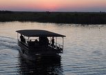 3 hours adventurous Chobe river boat cruise