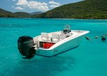 Full Day Bareboat Rental in St John USVI on our 15' Boston Whaler: Thing 1