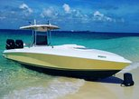 Caribbean - Bahamas: Private Speedboat Charter to Rose Island, Bahamas