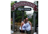 Appleton Estate & YS Falls (Best of 2019) Private Tour from Montego Bay