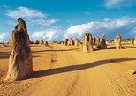 Pinnacles Desert, Koalas, and Sandboarding 4WD Day Tour from Perth