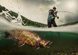 Exclusive fishing day with an expert guide in Trentino