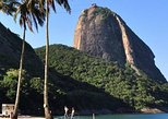 Discover the best of Rio in an afternoon: Tijuca forest, Christ and Sugarloaf!