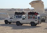 Private Tour: Sinai Jeep Safari, Abu Galum Snorkeling, Camel Ride and Bedouin Lunch