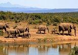 1 Day Tsavo east Classic safari Tour Package, Bruno safaris Kenya