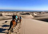 Beach Horseback Ride and Concon Sand Dunes from Santiago