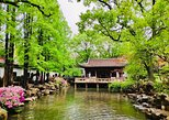 4-Hour Private Shanghai Highlights Tour