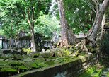 1- D adventure tour: Beng Mealea, Peung Komnou & English class