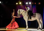 Dinner, Medieval & Flamenco Show at Valltordera Castle (Shuttle Bus Included)