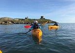 Dublin Bay Seal Kayaking Safari at Dalkey