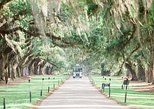 Boone Hall Plantation Admission with Guided House Tour
